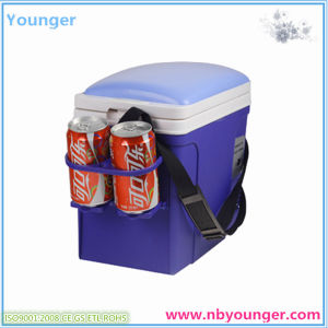 Car Cooler Box with 12V pictures & photos