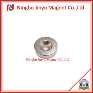 Rare Earth Permanent Neodymium Magnet for Speaker