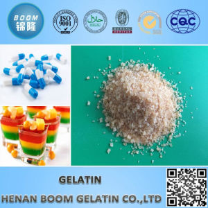 Unfabored Gelatin, Granular Gelatin, Pharmaceutical Grade Gelatin pictures & photos