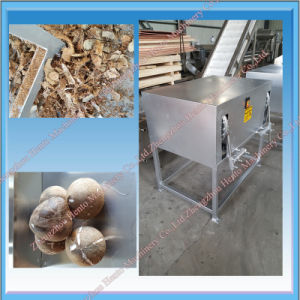 Chinese Supplier Coconut Peeler Machine For Sale pictures & photos