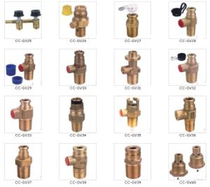 china lpg gas regulator gas valve for south africa china gas regulator. Black Bedroom Furniture Sets. Home Design Ideas