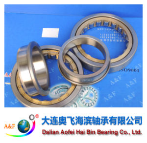 A&F Bearing/ Cylindrical Roller Bearing NJ213M pictures & photos