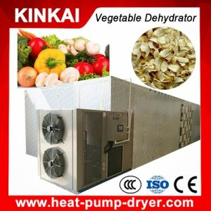 New Condition Dryer Type Industrial Vegetable Dehydrator with Drying Chamber pictures & photos