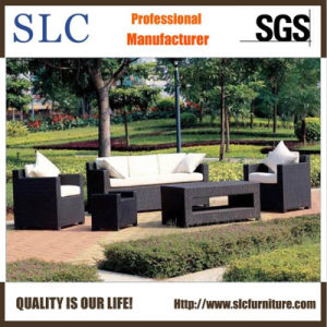 Leisure Sofa Set/Rattan Furniture Set/ Rattan Sectional Sofa (SC-B1007) pictures & photos