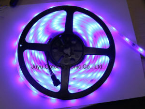 IP65 Epoxy Resin Cover Waterproof SMD5050 LED Decoration Light Strip pictures & photos