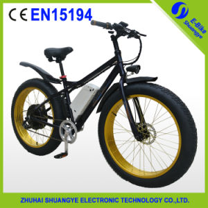 Li-ion Battery Power Fat Electric Bike Bicycle pictures & photos