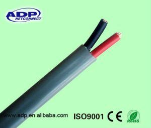 Electrical Wire (Copper Conductor PVC Insulation PVC Sheath Cable) BVV pictures & photos