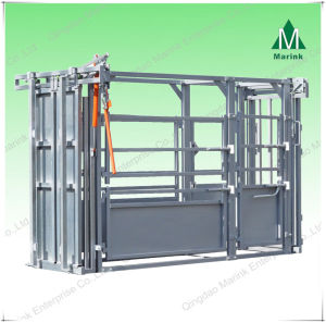 Squeeze Chute for Cattle & Cow (Galvanized) pictures & photos
