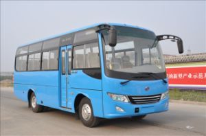 Lishan Brand New Tourist Bus Ls6760