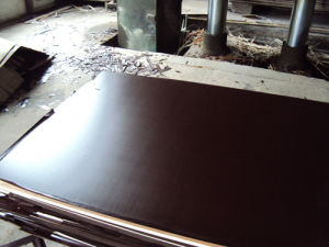 18mm Black Film Faced Construction Plywood/Concrete Formwork in Construction pictures & photos
