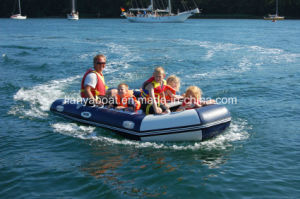 Liya 4.3m China Inflatable Motor Boat Water Fun Power Boat pictures & photos