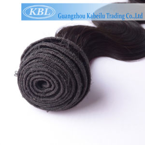 Brazilian Top Quality Human Hair pictures & photos