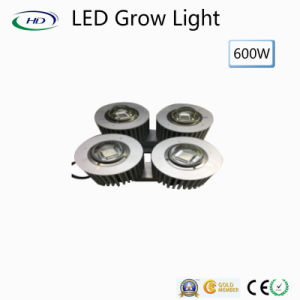 High Power 600W Waterproof LED Grow Light IP66 pictures & photos