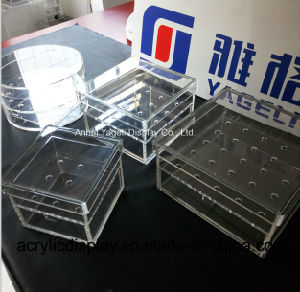 China Manufacture Customized Acrylic Flower Box with Logo pictures & photos