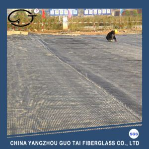 Hot Sale Chinese Supply Basalt Fiber Mesh/ Geogrid pictures & photos