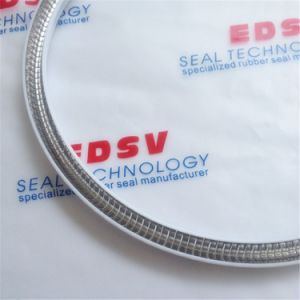 High Quality for Spring Energized Seal O Ring and Rubber Seal pictures & photos