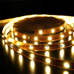 4.8W 5m LED Flexible Strip Lamp DC 12V 3528SMD pictures & photos