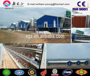 Chicken Farm/High Quality Prefab Poultry House in Low Price (JW-16217) pictures & photos