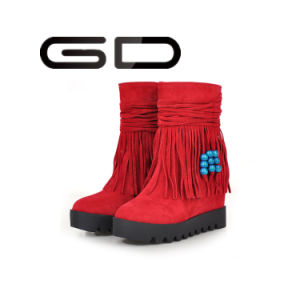 Low Price Fashion Tassel Women Outdoor Winter Boots pictures & photos