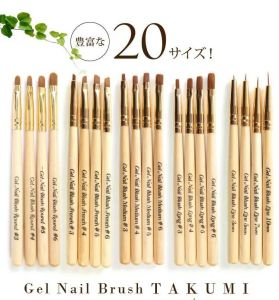 Professional Nail Art 2016 New Hot Gel Nail Use 20 Different Kinds Tip Nail Art Painting Brush Pen pictures & photos