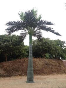 Artificial Plants and Flowers of Royal Indonesia Palm Gu-SL902094444 pictures & photos