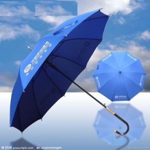 Advertising Umbrella (BD-29) pictures & photos