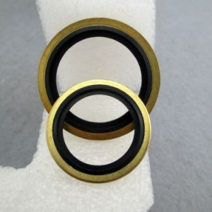 Bonded Gasket in Copper Material pictures & photos