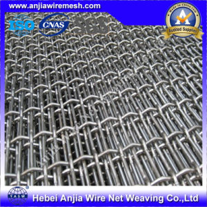High Quality Stainless Steel Square Wire Mesh with (CE and SGS) pictures & photos