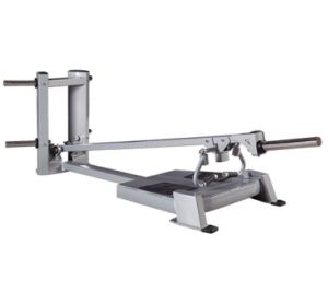 Body Building T-Bar Row Tz-5038 Commercial Fitness Equipment pictures & photos