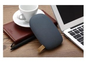 Power Banks for iPhone, iPad and Other Smart Phones (CP01026) pictures & photos