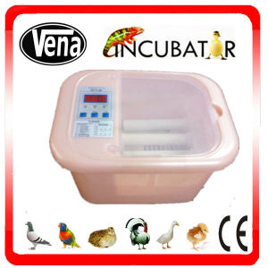 Promotion Sale Mini Incubator for 12 Eggs. pictures & photos