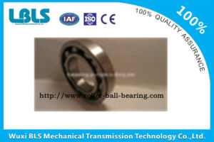 Competitive Price and High Quality Ball Bearings
