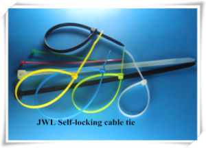 UL SGS Approved Self-Locking Nylon Cable Tie Manufacturer pictures & photos