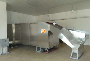 Pine Nut Shelling Machine pictures & photos
