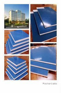 Plastic Coated Film Faced Plywood pictures & photos