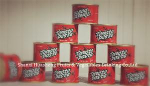 70g*50 28%-30% Tomato Paste 70%