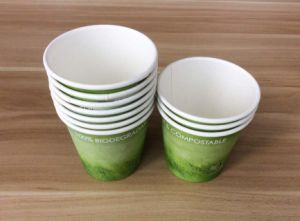 4oz Small Test Coffee Cups (biodegradable) PLA Coated Inside pictures & photos