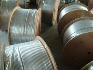 AISI304L Stainless Steel Coiled Tubing pictures & photos