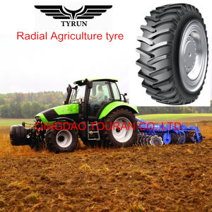 R1 Tractor Tyre 5.00-12, 6.00-12, 7.50-16, 8.3-24 Agriculture Tyre, OTR Tire pictures & photos
