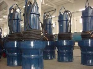 High Quality Submersible Axial-Flow Pump-Qzb (QHB)