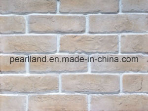 Artificial Culture Stone Use for Outer Wall (ASB-0218-W02) pictures & photos