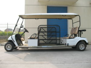 Wheelchair Car for 5passengers (PE2LY2068) pictures & photos