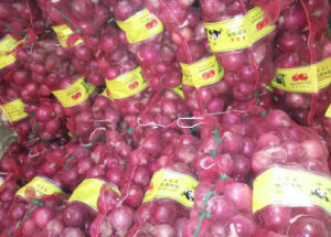 Fresh New Crop Export Good Quality Red Onion pictures & photos