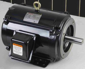 Tenv Washdown NEMA Motor