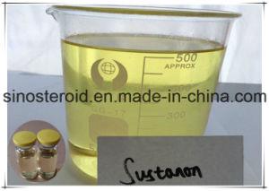 Testosterone Sustanon 250/Sustanon 375 Mg/Ml