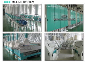 50t Advanced Flour Roller Mill pictures & photos