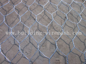 Galvanized Professional Hexagonal Wire Netting pictures & photos