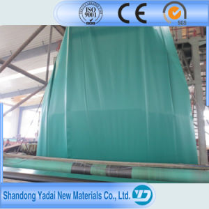 Polyethylene Sheet HDPE/LDPE/LLDPE Geomembrane pictures & photos