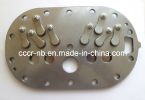 Valve Plate Assembly pictures & photos