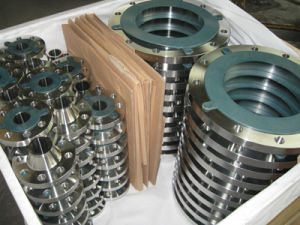 ANSI B16.5 Flanges pictures & photos